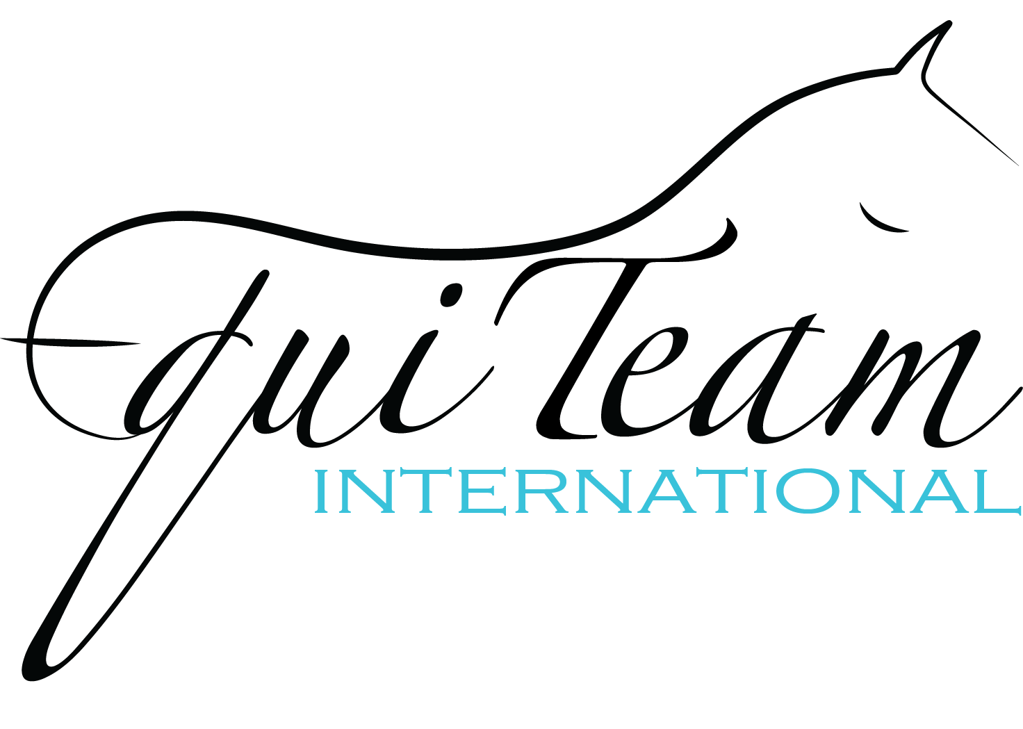 Equiteam international