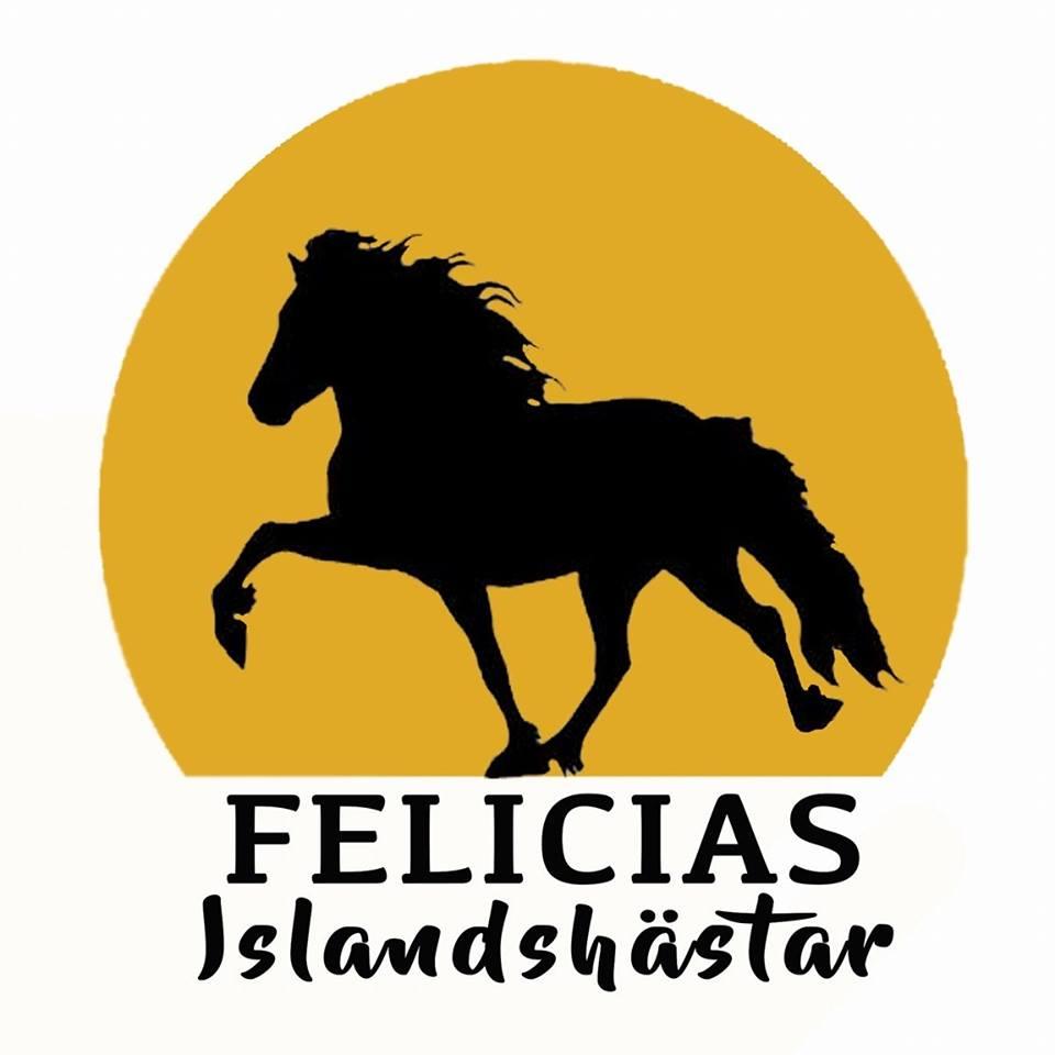 Felicias islandshästar