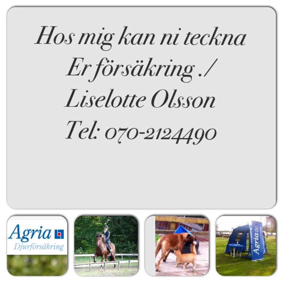 Liselotte Olsson-Agria ombud