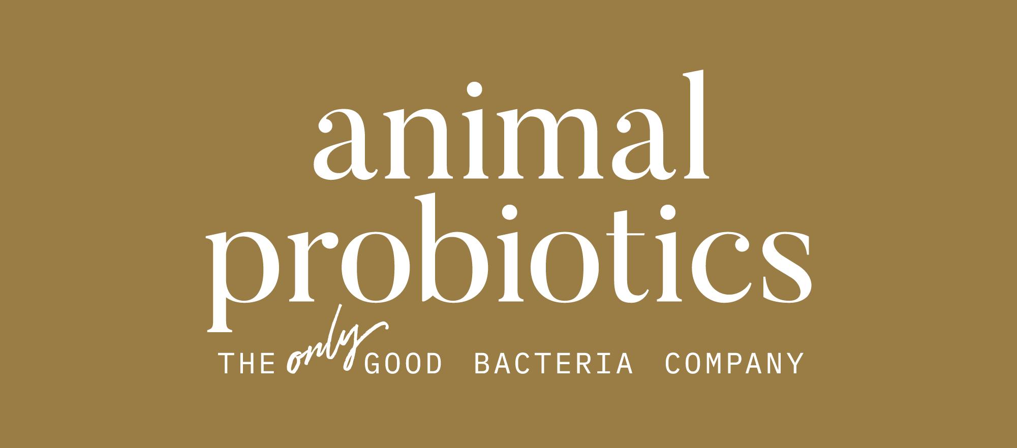 Animal probiotics
