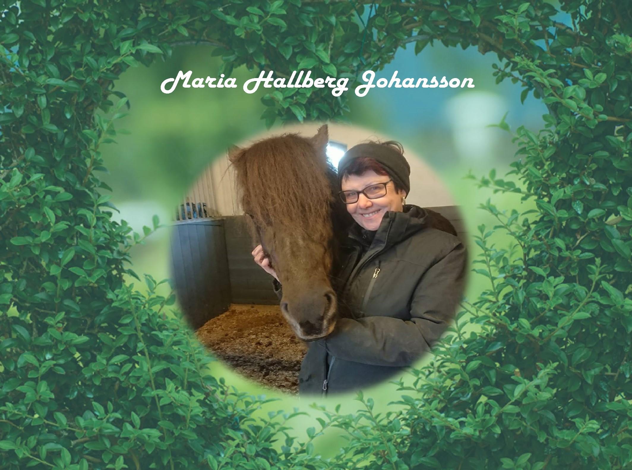 Maria Hallberg Johansson
