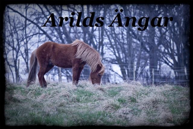 Arilds ängar