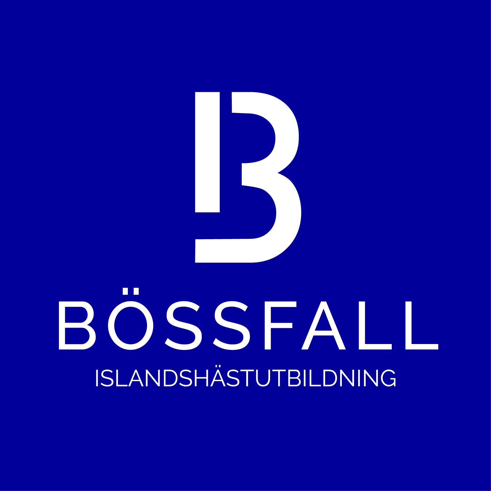 Bössfall Islandshästutbildning